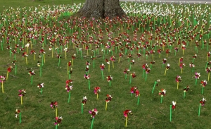 Pinwheels are fun and attractive but meant DEATH for one Lankville area man.